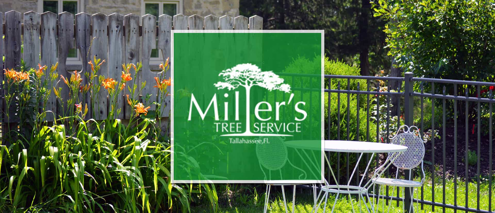 Best Tree Company Tallahassee Tree Service
